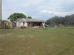 Photo of 115 Nolan Road, PIERSON, FL 32180 (MLS # V4718857)