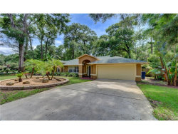 Photo of 450 Secluded Oaks Trail, DELAND, FL 32724 (MLS # V4719300)