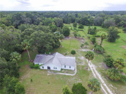 Photo of 253 Leonardy Avenue, OSTEEN, FL 32764 (MLS # V4719948)