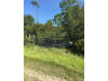 Photo of 214 Black Lake Road, OSTEEN, FL 32764 (MLS # V4720274)