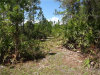 Photo of Ninemile Point Road, PIERSON, FL 32180 (MLS # V4721125)