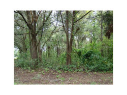 Photo of 135 S High Street, LAKE HELEN, FL 32744 (MLS # V4721897)