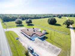 Photo of 1017 W State Road 40, PIERSON, FL 32180 (MLS # V4722274)
