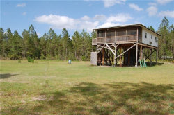 Photo of 280 Volusian Forest Trail, PIERSON, FL 32180 (MLS # V4723316)