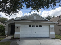 Photo of 1833 Horsechestnut Court, TRINITY, FL 34655 (MLS # W7631075)