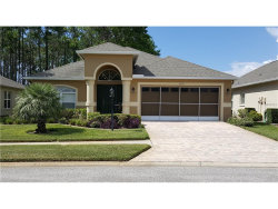 Photo of 11533 Heritage Point Drive, HUDSON, FL 34667 (MLS # W7632845)
