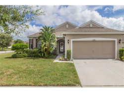 Photo of 13516 Meadow Golf Avenue, HUDSON, FL 34669 (MLS # W7634319)