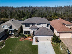 Photo of 1141 Ketzal Drive, TRINITY, FL 34655 (MLS # W7634988)