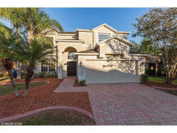 Photo of 1354 Impatiens Court, TRINITY, FL 34655 (MLS # W7635583)