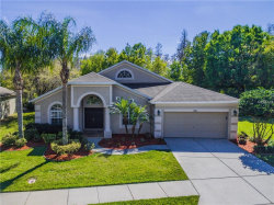 Photo of 7836 Halen Court, TRINITY, FL 34655 (MLS # W7638827)