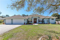 Photo of 13194 Amber Woods Street, SPRING HILL, FL 34609 (MLS # W7639008)