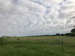 Photo of 1897 Bledsoe Road, Gunter, TX 75058 (MLS # 13578662)