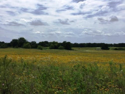 Photo of Lot 1 FM 922, Valley View, TX 76272 (MLS # 13646262)