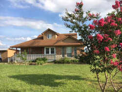 Photo of 25437 Dove Hollow Drive, Justin, TX 76247 (MLS # 13649799)