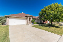 Photo of 237 Willowlake Drive, Little Elm, TX 75068 (MLS # 13714459)