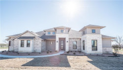 Photo of 100 Maravilla Drive, Aledo, TX 76008 (MLS # 13751193)