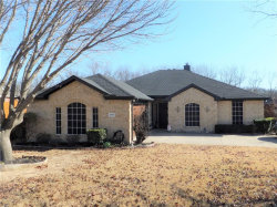 Photo of 204 ROLLING MEADOWS Drive S, Wylie, TX 75098 (MLS # 13752967)