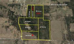 Photo of 39ac County Road 115, Gainesville, TX 76240 (MLS # 13759944)