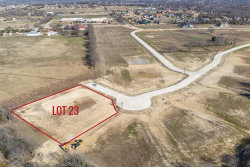 Photo of 621 Irene Lane, Lot 23, Fairview, TX 75069 (MLS # 13770541)