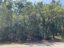 Photo of 18015 Southhill Drive, Lot 15, Whitney, TX 76692 (MLS # 13776282)