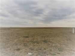 Photo of LT196 Whispering Pines Lane, Lot 196, Gunter, TX 75058 (MLS # 13778286)