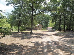 Photo of 2750 Vz County Road 1703, Grand Saline, TX 75140 (MLS # 13881731)