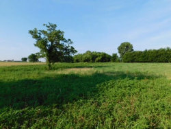 Photo of 000 Dicken Road, Howe, TX 75459 (MLS # 13884314)