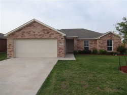 Photo of 329 Meadow View Lane, Anna, TX 75409 (MLS # 13934008)