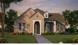 Photo of 1226 White Squall Trail, Arlington, TX 76005 (MLS # 13962047)