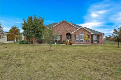 Photo of 141 Prairie Crossing Court, Howe, TX 75459 (MLS # 13967587)