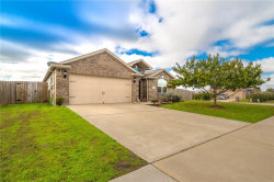 Photo of 329 Meadow Ridge Drive, Anna, TX 75409 (MLS # 13971128)
