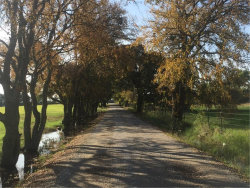 Photo of TR 14 MANN Road, Valley View, TX 76272 (MLS # 13971298)