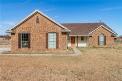 Photo of 905 Sandlin Lane, Springtown, TX 76082 (MLS # 13984609)