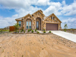 Photo of 3608 Pendleton Court, Heartland, TX 75126 (MLS # 14029299)