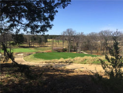 Photo of Lot 20 Castle Pines Circle, Lot 20, Gordonville, TX 76245 (MLS # 14068870)
