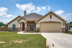 Photo of 416 Green Meadow Drive, Boyd, TX 76023 (MLS # 14088779)