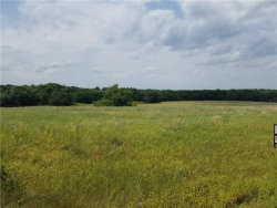 Photo of 12.9 Twin Oaks Lane, Gordonville, TX 76245 (MLS # 14092718)