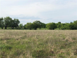 Photo of TBD2 BLEDSOE Road, Lot 6, Gunter, TX 75056 (MLS # 14232989)