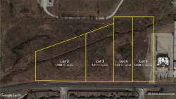Photo of Lot 4 FM 1173, Krum, TX 76249 (MLS # 14241259)