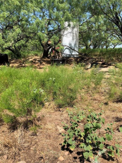 Photo of FM 209 FM 209, Graham, TX 76491 (MLS # 14245385)