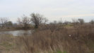 Photo of 6815 County Road 912, Lot 1, Joshua, TX 76058 (MLS # 14292749)