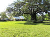 Photo of 505 Poplar St, Hico, TX 76457 (MLS # 14295016)