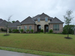 Photo of 497 Life Spring Drive, Rockwall, TX 75087 (MLS # 14349418)