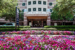 Photo of 330 Las Colinas Boulevard E, Unit 460, Irving, TX 75039 (MLS # 14390571)