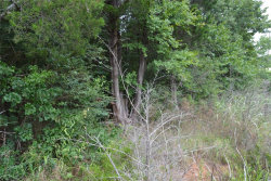 Tiny photo for TBD S Eisenhower, Denison, TX 75020 (MLS # 14400616)