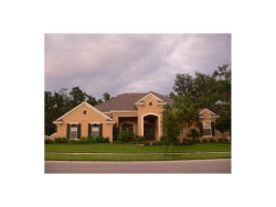 Photo of 15816 Sorawater Drive, LITHIA, FL 33547 (MLS # O5535249)