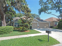 Photo of 15732 Starling Water Drive, LITHIA, FL 33547 (MLS # T2898984)