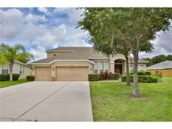 Photo of 11418 Dutch Iris Drive, RIVERVIEW, FL 33578 (MLS # T2904627)