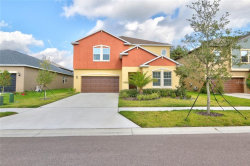 Photo of 14275 Blue Dasher Drive, RIVERVIEW, FL 33569 (MLS # T2904898)