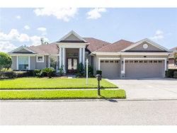 Photo of 16143 Ivy Lake Drive, ODESSA, FL 33556 (MLS # T2908465)